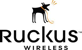 Ruckus Wireless Network Logo